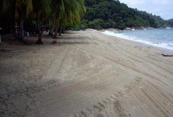 teluk-batik-beach-2