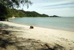 beach-cafe-3a