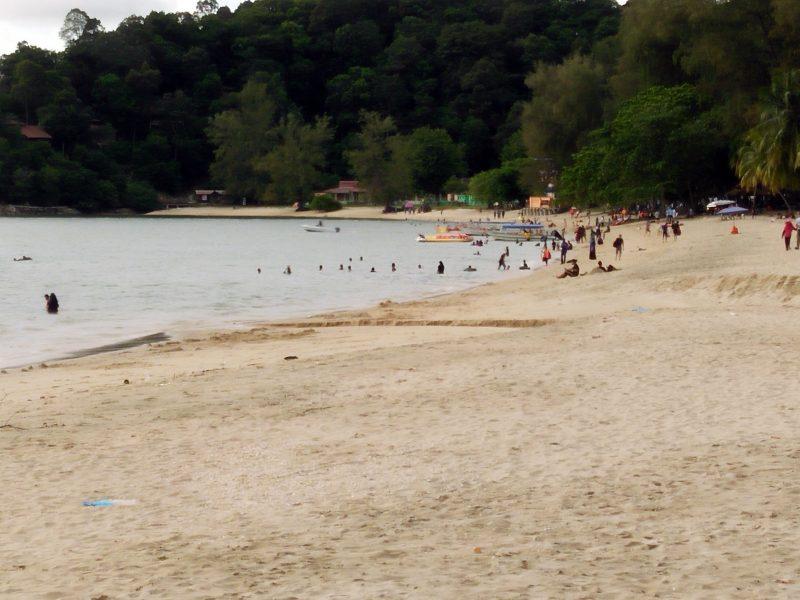 jungle-tracking-activity-and-afternoon-tea-at-beach-cafe-teluk-batik-04